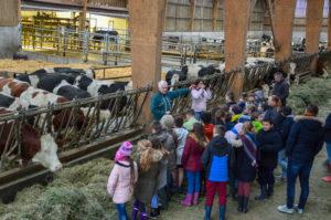 Les « jeunes pousses » en visite à la ferme !